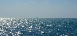 Hindia