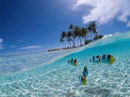 warna air laut