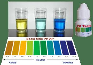 cara membuat air alkaline sendiri