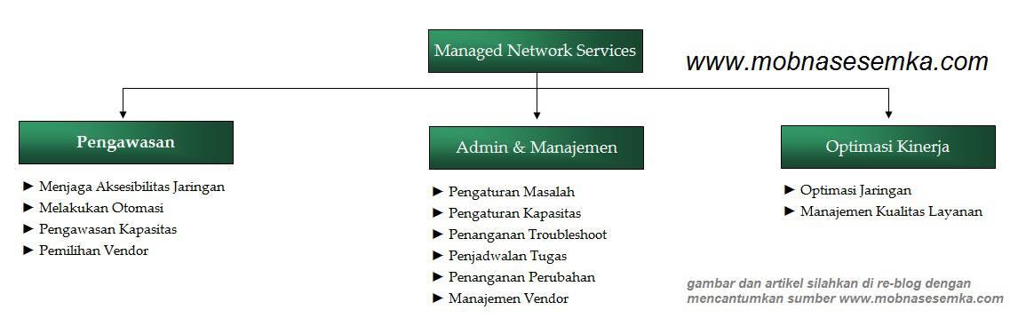 Arti dari Managed Network Services