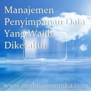 Manajemen Penyimpanan Data Yang Wajib Diketahui